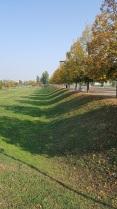 1 - le sentinelle del parco, anima d'autunno gioioso