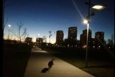 39 - paesaggio al tramonto