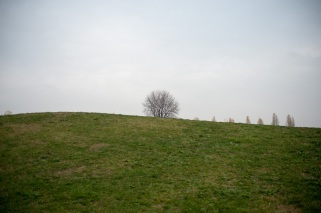 42 - colline invernali