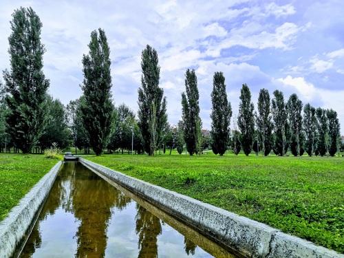 3 - 34 - Mirco Posa - prospettiva di alberi con corso d'acqua
